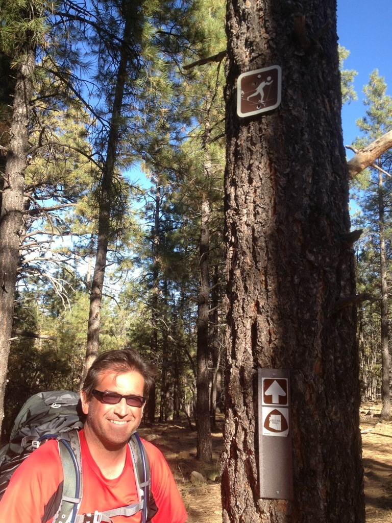 Flagstaff to Mormon Lake:  Back on the trail!